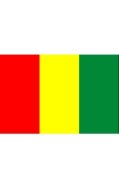 Guinea national flag