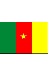 Kamerun national flag