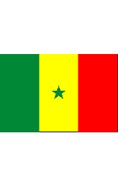 Senegal national flag