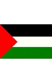 Palestina national flag