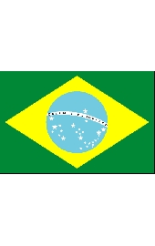 Braziliannational flag