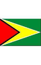 Guiana national flag