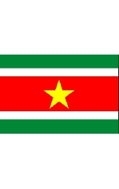 Suriname national flag